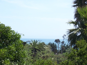 View from SB Zoo